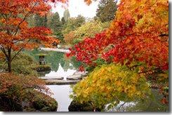 L'automne et le stress